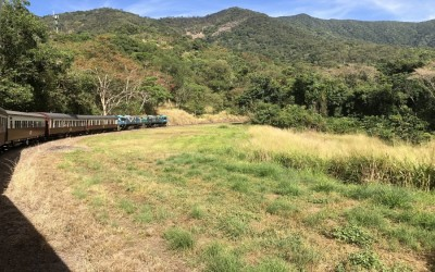 4WD Camping in FNQ image