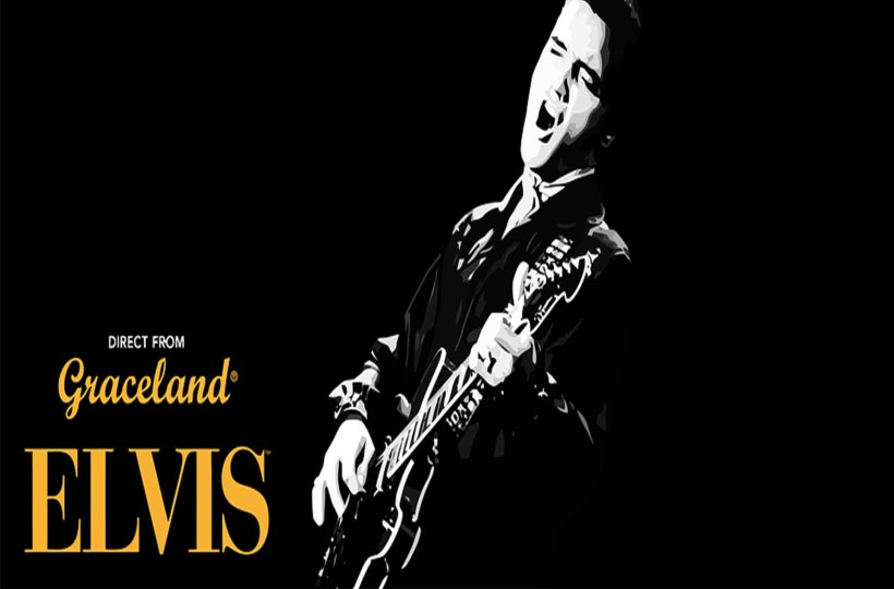 Get Groovy for an Elvis Party! post image