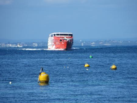 Perth and Rottnest Island image